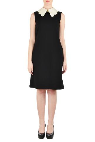 Contrast Scallop Collar Ponte Shift Dress